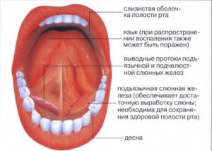 Изменения слизистой оболочки полости рта